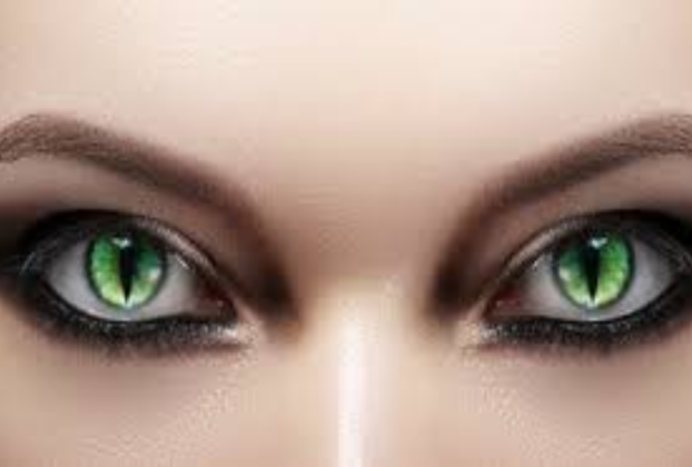 Contact Lenses Halloween-The Existence Relish You Overlooked